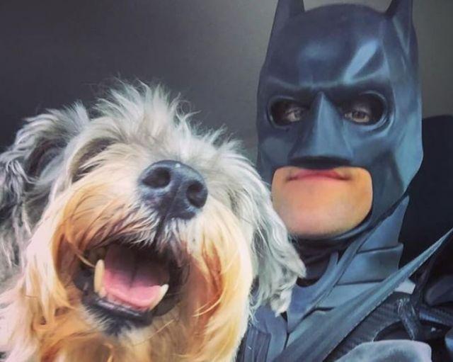 Batman rescata a perros y gatos que iban a ser sacrificados